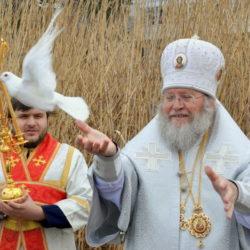 Митрополит Иларион о православных добровольцах